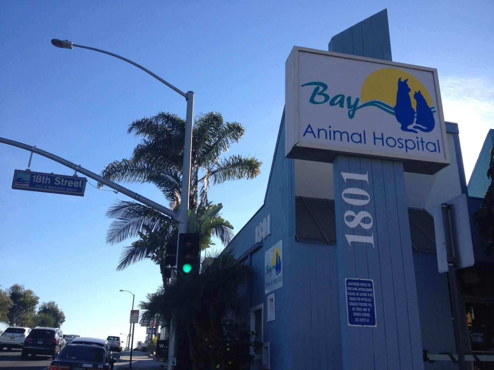 Bay Animal Hospital